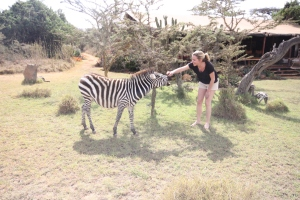 Ziggy the Zebra at Enasoit