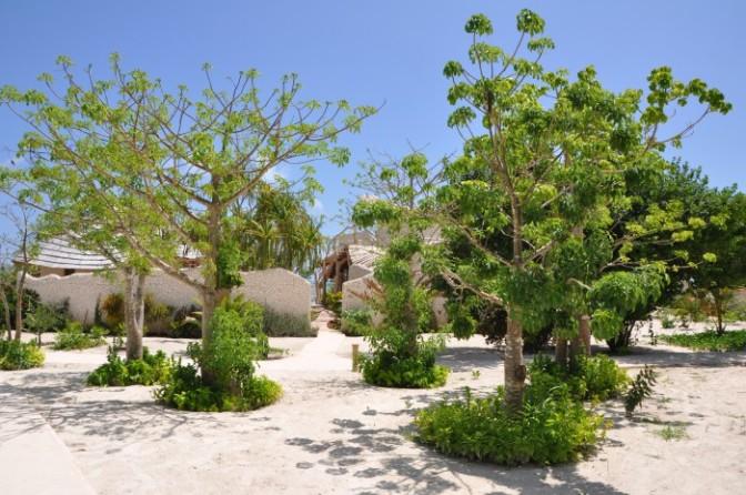 Day 3 – Zanzibar White Sand Luxury Villas & Spa