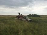 Naibor - mud stuck 3