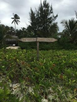 ZWS - no kite sign